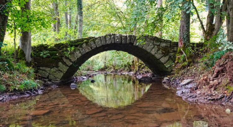 Gemütlich durch's Buchenbachtal geschlendert – Brücke im Buchenbachtal